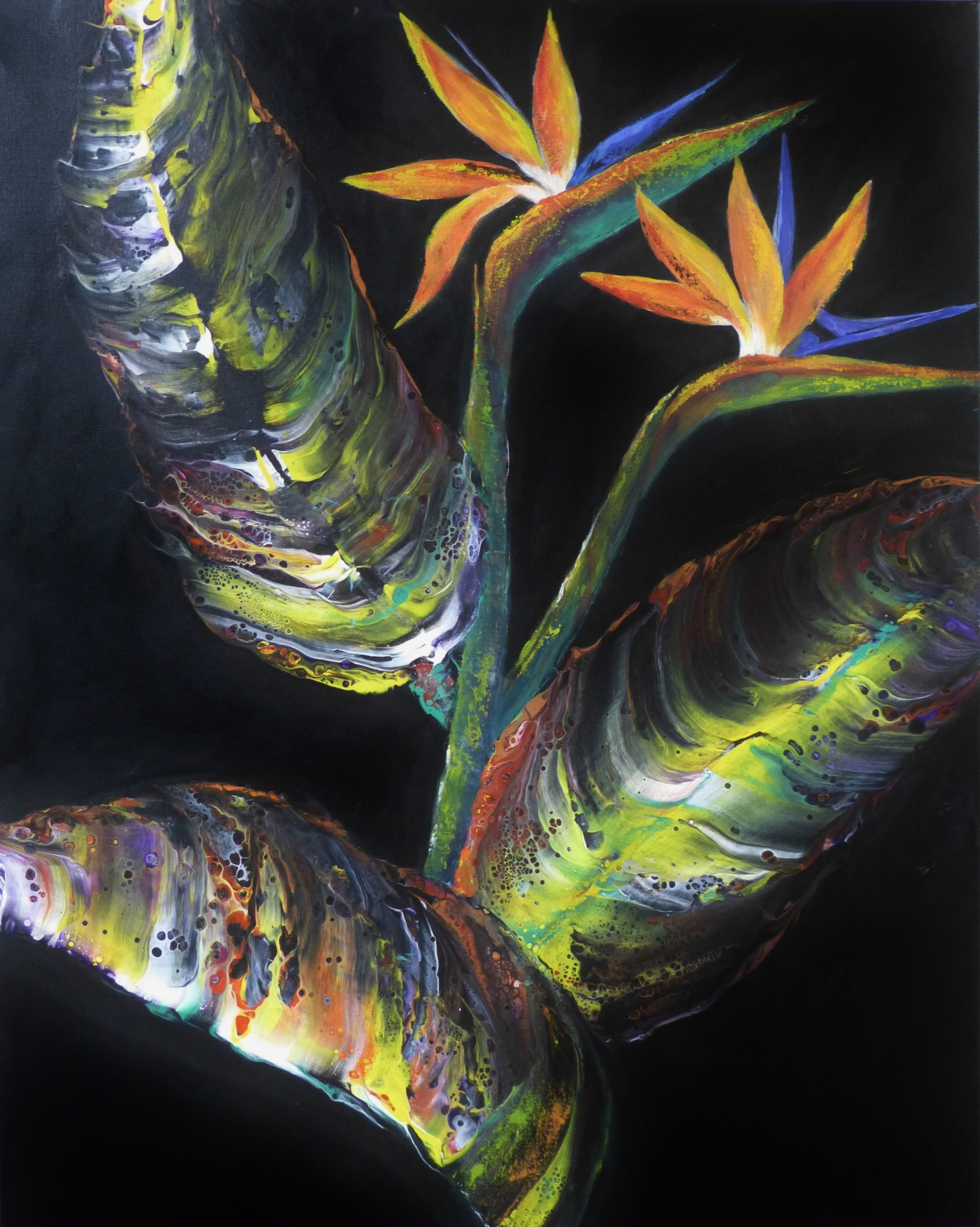 Flow Art Painting of Strelitzia flowers with black background
