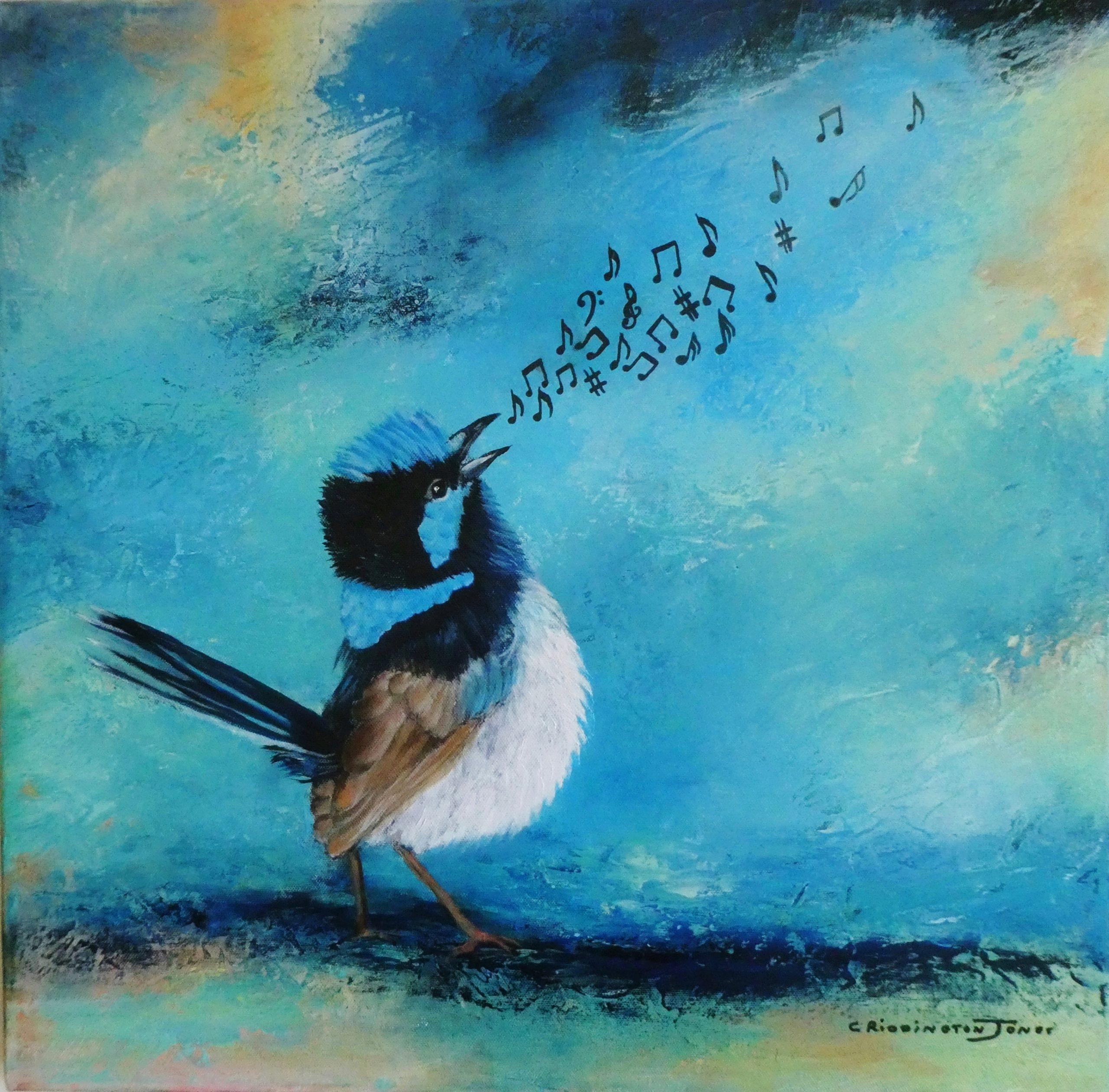 Superb Fairy Wren singing
