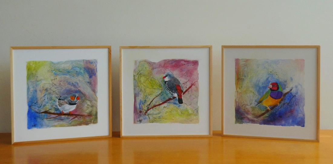 australian-finch-triptych-495-clare-riddington-jones_orig