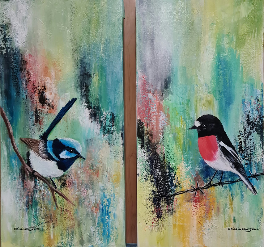 superb-fairy-wren-and-scarlet-robin
